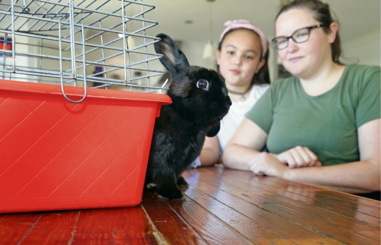 Jacky Cuomo (Bullsbrook) from Besty's Bunny Rescue with her daughter Nalitah (9) and Lynlee. Photo: Martin Kennealey