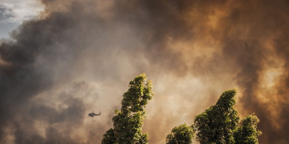 The Forrestdale bush fire has continued to rage overnight. Picture: Josh Tucker.