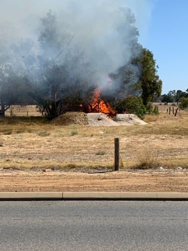 Eyewitnesses say Seville Grove fire starter threatened to stab security