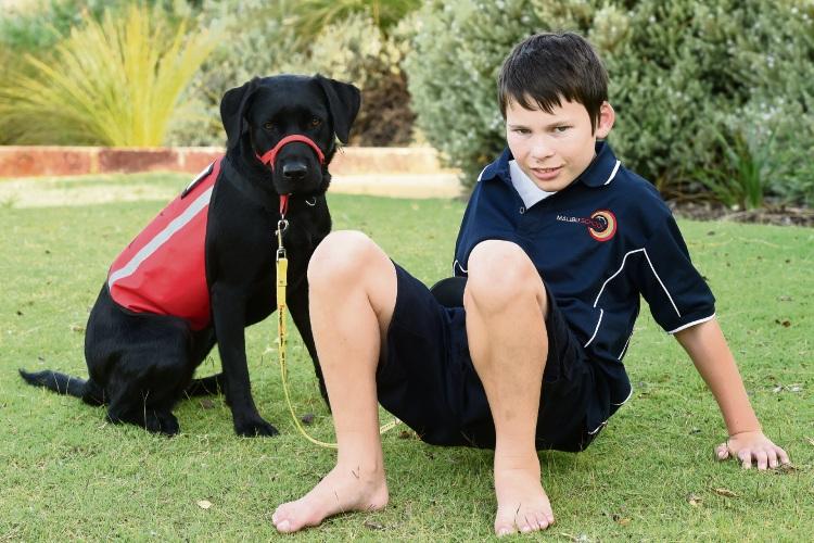 Port Kennedy boy bonds with seizure alert dog