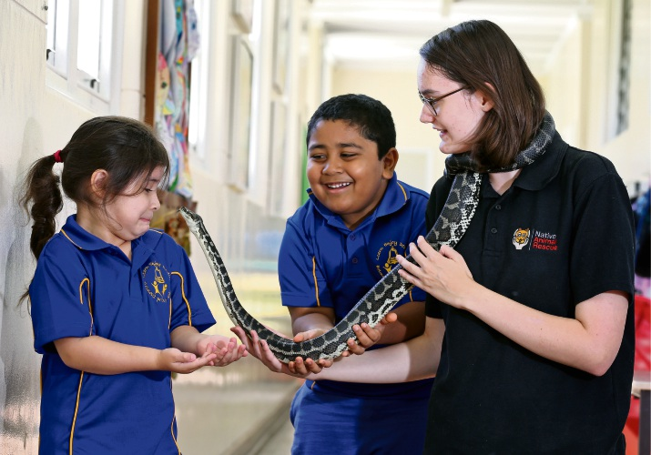 Belmont Primary School Pre-primary students Maria Doerzbacher (5) and Omid Khan (5) with Native Animal Rescue reptile co-ordinator Hayley Simich and Leo, a four-year-old carpet python. Picture: David Baylis