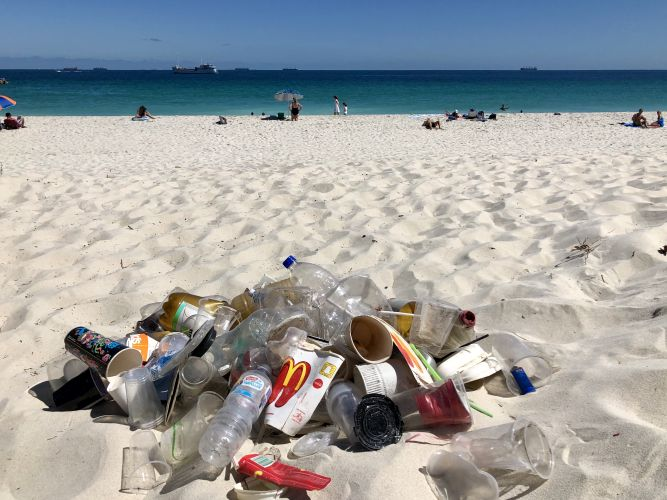 Volunteers to clear beaches from North Freo to Mosman Park