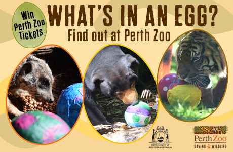 B2Me member giveaway – win a family pass to Perth Zoo