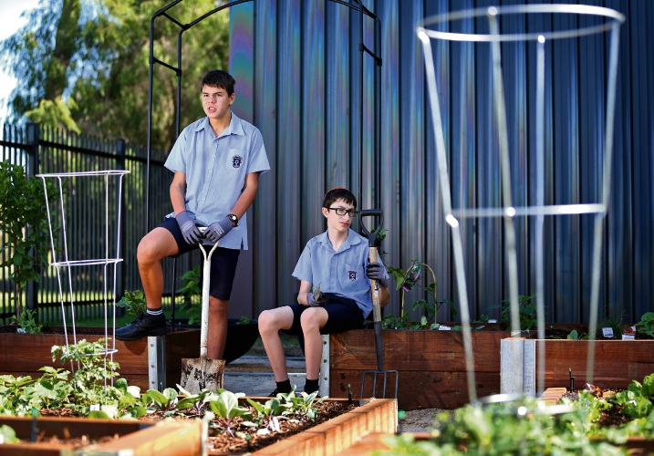 L-R: Louis Granich (13) of Woodlands and Samuel Blitz (14) of Yokine in the new garden. Carmel School recently launched its new vege patch sustainable garden thanks to a community grant from SUEZ recycling. Picture: David Baylis www.communitypix.com.au d492325