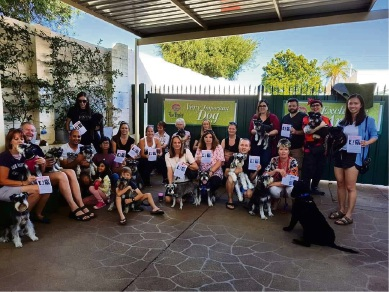 Dog lovers gathered at FurBaby Boutique and Cafe in Westminster to help find an Eaton family's dogs