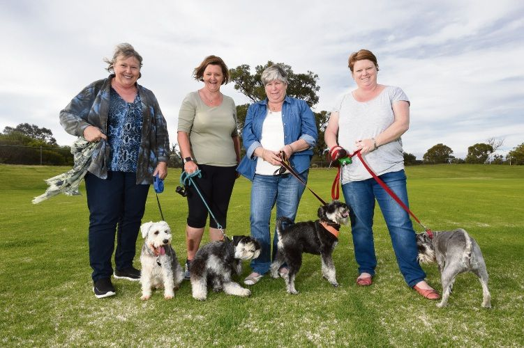 Irene Cook with Tara, Angie Brown with Albie, Norma Eacott with Olli and Jodie. The women have been calling for an enclosed dog park in Mandurah.