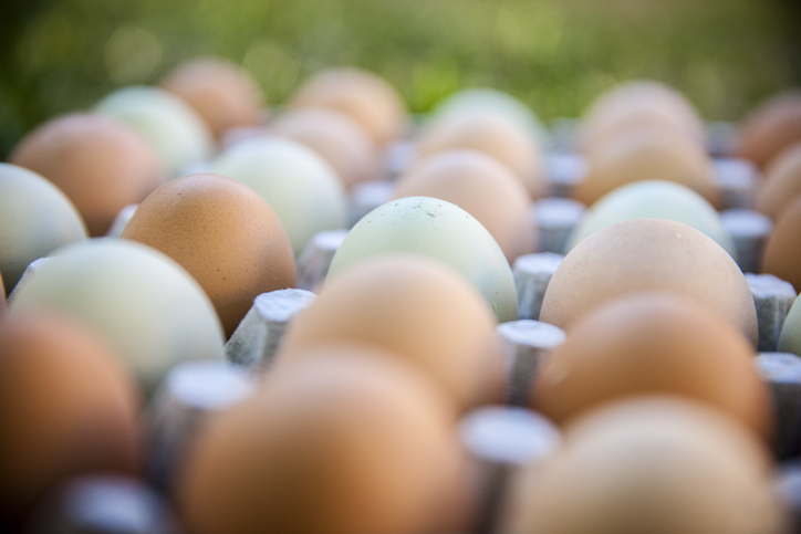 Fears cage eggs being sold as free range in Perth