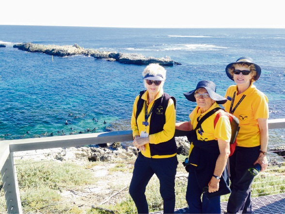 The Rottnest Voluntary Guides Association president Lyn Le Provost on the WA island.