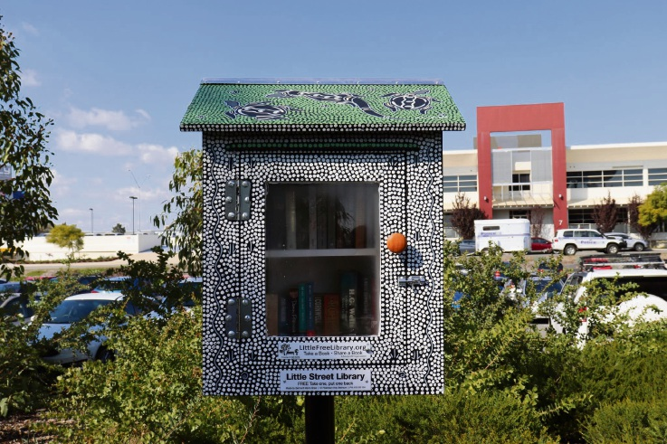 The Little Free Library was painted by Ken Farmer and created by Belmont Men's Shed. Picture: Emily Doherty.