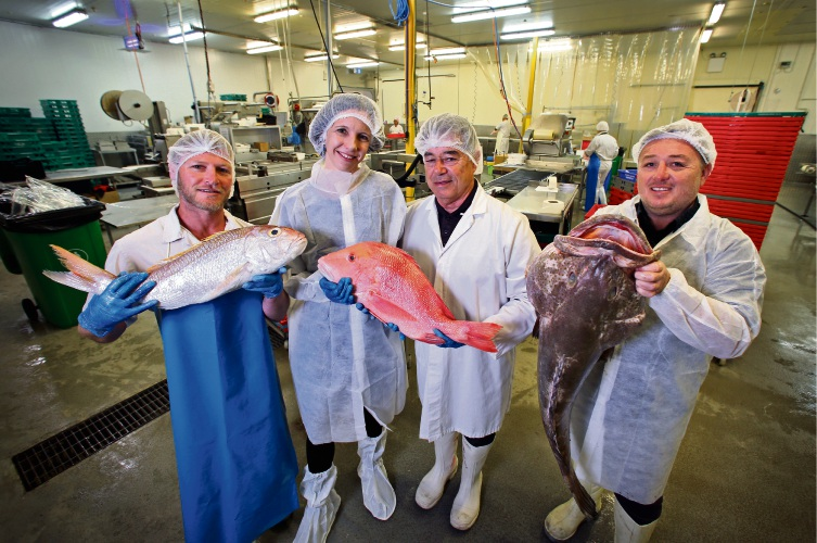 L-R: Andrew Catalano (Production Manager, Catalano's Seafood), Mayor Renee McLennan (Town of Bassendean), Nick Catalano (MD, Catalano's Seafood) and David Catalano (Operations Manager, Catalano's Seafood), seen here at Catalano's Seafood in Bassendean.  Catalano's Seafood will be showing off the inner workings of a well-developed local business during the Bassendean Festival of Local Business, culminating in a talk on innovation and reinvention and serve up cooked samples on June 13. The business is celebrating its 50th anniversary this year. Picture: David Baylis www.communitypix.com.au   d493319