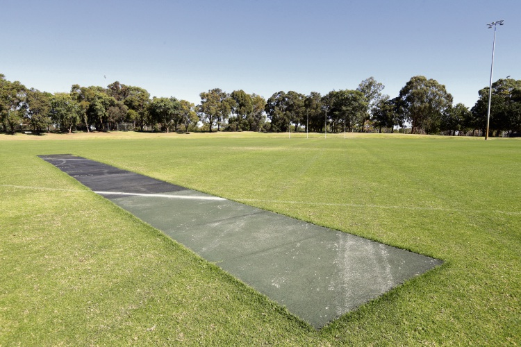 The cricket wicket at Kingsway Regional Sporting Complex. Picture: Martin Kennealey d492876