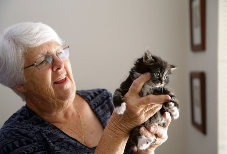 Madeley foster carer June Bartlett with Josie. Picture: Martin Kennealey www.communitypix.com.au d492226