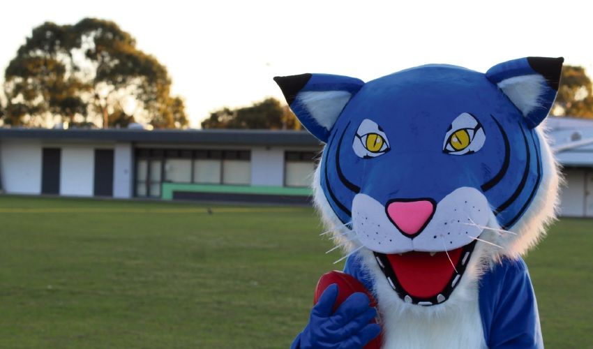 Carine JFC mascot outside the clubrooms