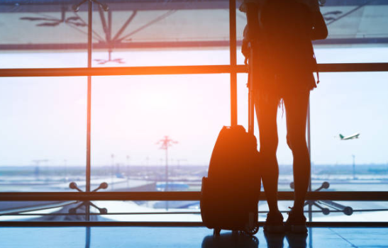 Travellers returning from overseas can expect to go through unprecedented security screenings as Australia bolsters its defences against African swine fever.