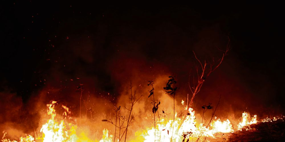 A fire burns in highway margins in the city of Porto Velho, part of Brazil's Amazon. Picture: AP Photo/Eraldo Peres