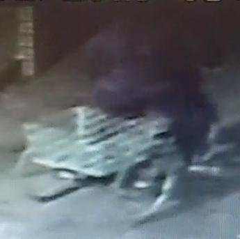 The brazen thief was caught on CCTV.