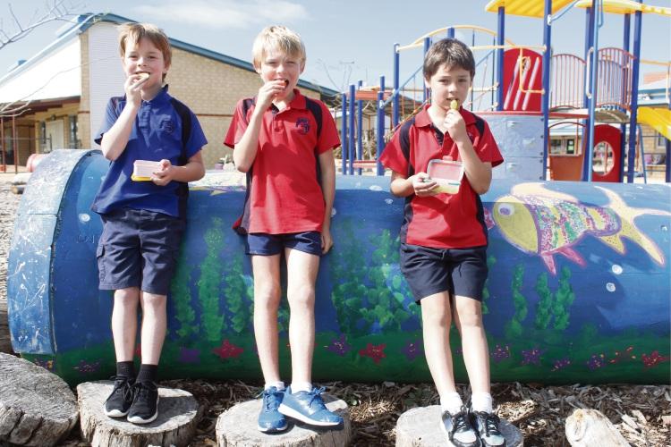 Ocean Road Primary School Year Two students Zavier Hammington, Owen Henderson and William Rusch.