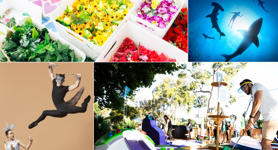What's On: 13 things to do during the school holidays.