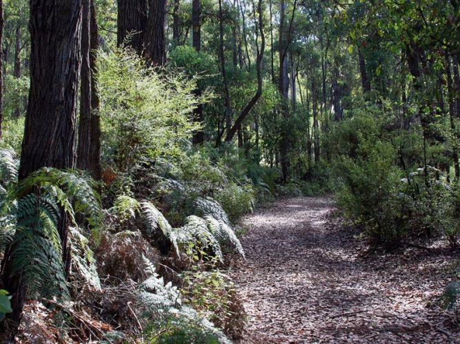 Sign up for Dwellingup trails course