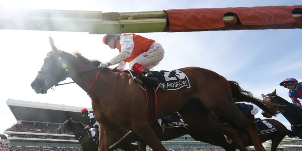 Craig Williams rides Vow and Declare to win the Melbourne Cup. Photo: Getty