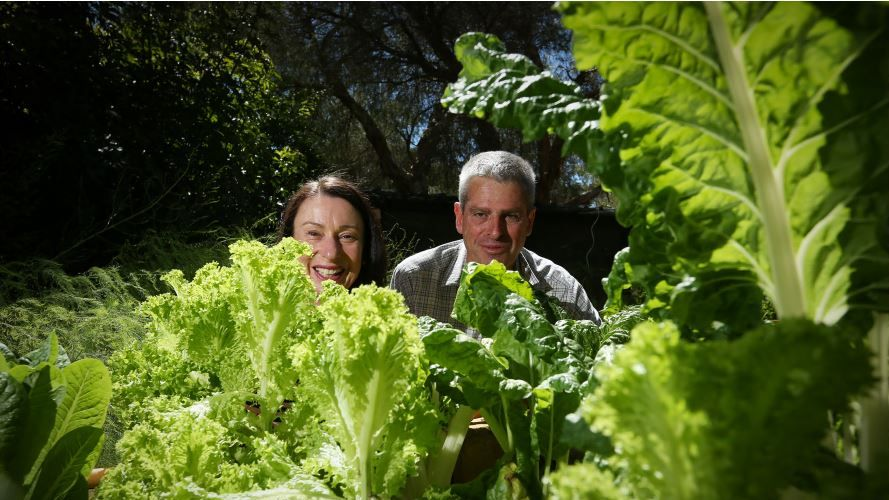 (L-R) Bron and Phil Genoni are swinging open the doors to their Banjup garden. Photo: Andrew Ritchie.