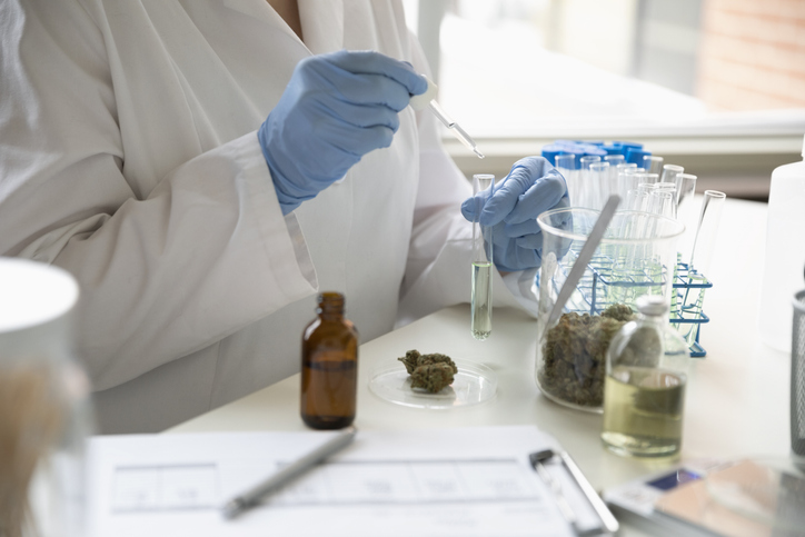 Aged care provider Catholic Homes is taking part in medicinal cannabis trials. Picture: Stock Image