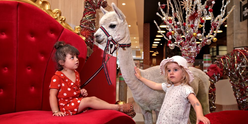 Zyah Alanzy (3), of Clarkson, and Harper Hole (2), of Alkimos, with Trixie the alpaca at Ocean Keys Shopping Centre, which will offer pet photos with Santa this year and some unusual pets are allowed. Picture: David Baylis www.communitypix.com.au d496914