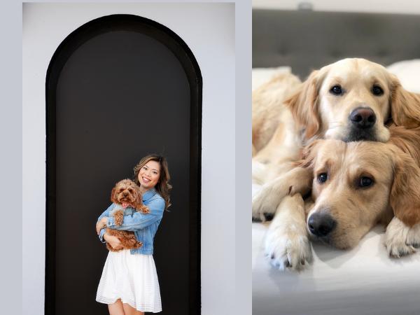Organiser Esther Wagner and her dog Frankie. Popular dogs Kylo and Vader.