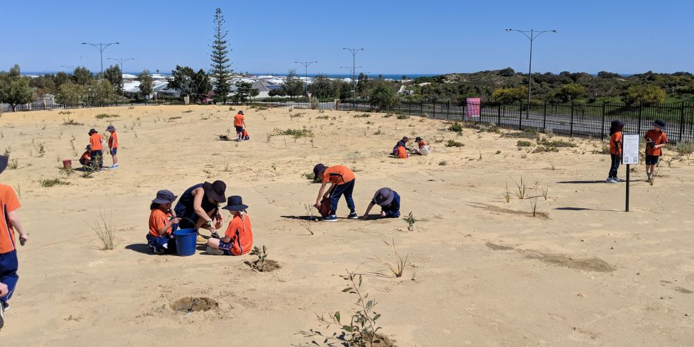 St James' Anglican School students nurture plants in the Carnaby's cockatoo project habitat. Pictures supplied