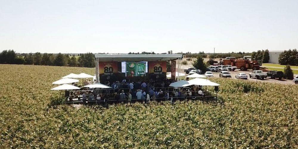 The Trandos Farms 80-year celebration in a corn field. Picture: Image Style Studio