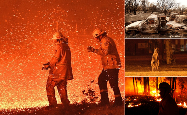 Scenes from the devastating bushfires. Pictures: Getty