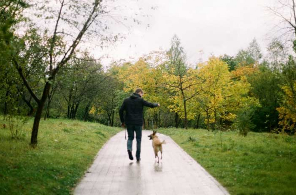 man walking in the park with his dog