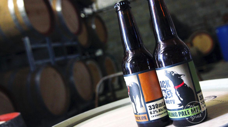 Brew & A: Black Dog Brewery