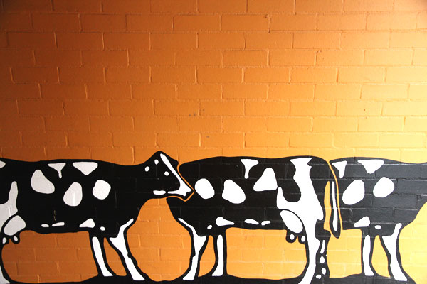 Spotted Cow Toowoomba
