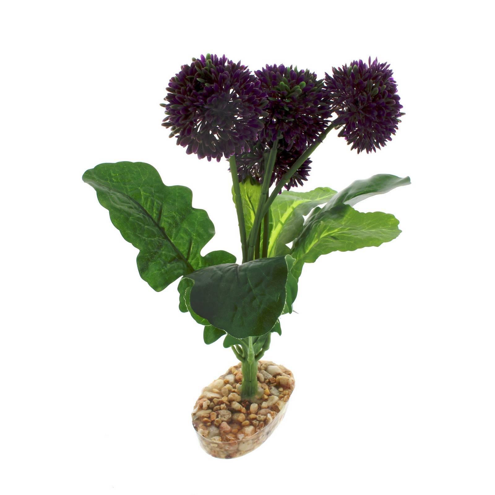 Reptile Plant Purple Pom Pom With Gravel Base Realistic Silk