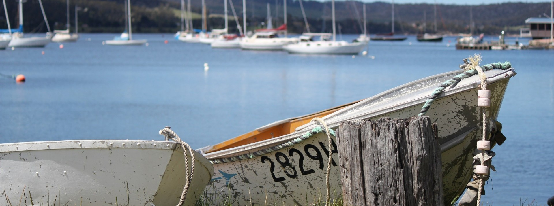 <p> </p><p> </p>The Cygnet Market is located in the picturesque town of Cygnet, Tasmania.