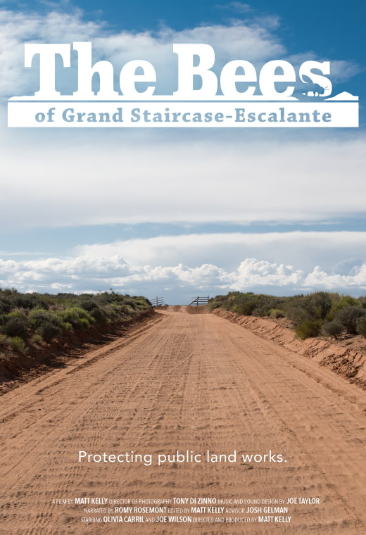 The Bees of Grand Staircase-Escalante