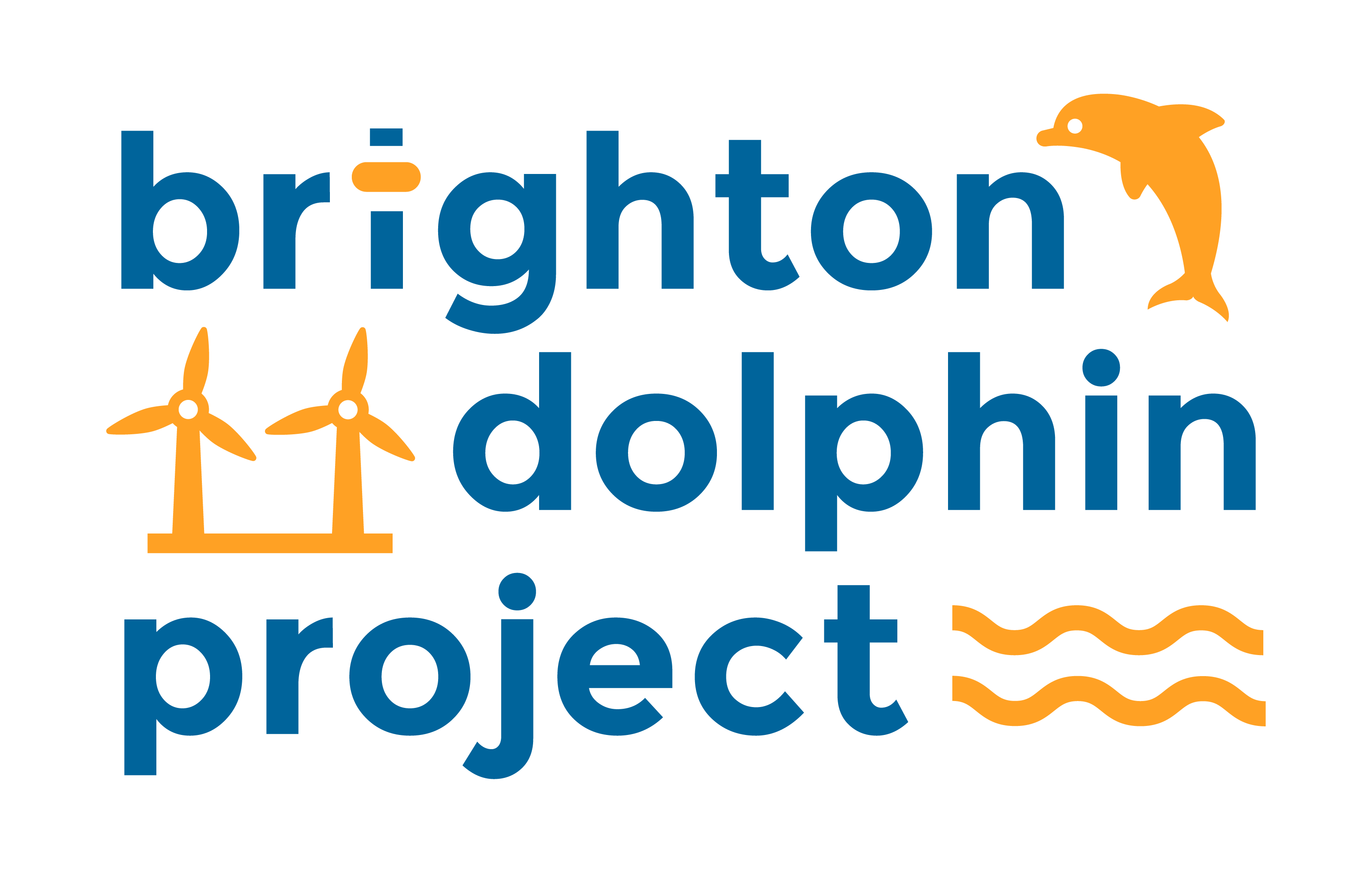 Brighton Dolphin Project Poster