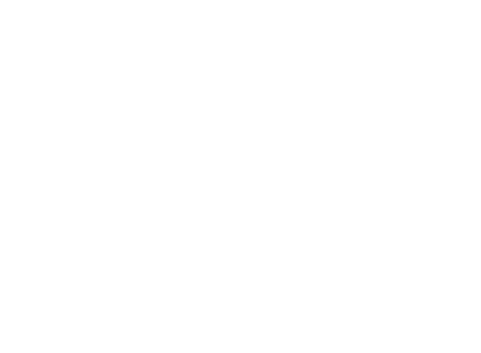 Wheen Bee Foundation Poster