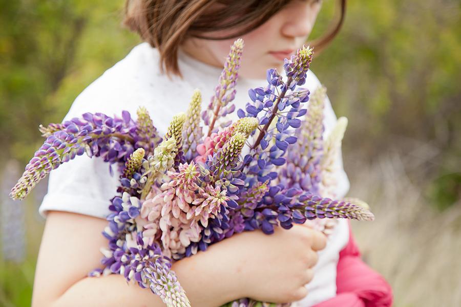 Lupin-bouquet-jpg.jpg