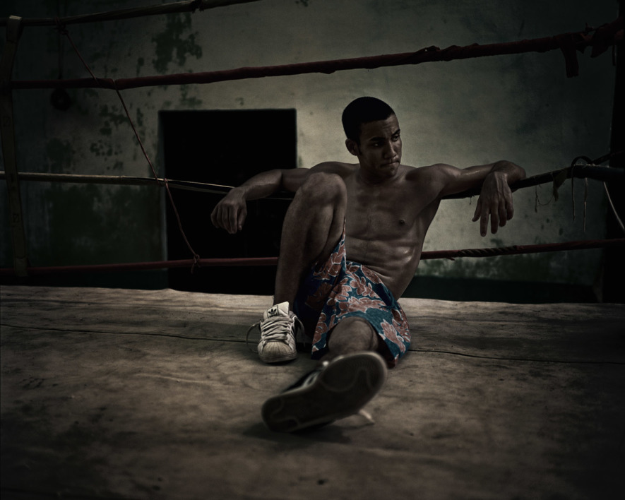 Havana-Boxer-04.jpg