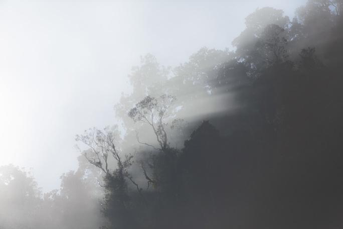 landscape-170513_340.jpg