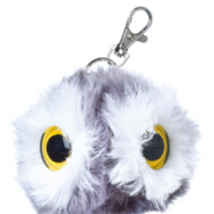 Artic-Owl-keyring.png?mtime=20190726152803#asset:13492:thumbnail