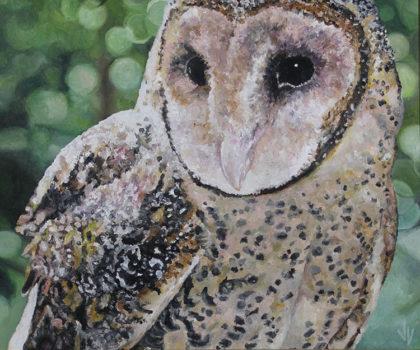 Masked Owl Jeska Valk