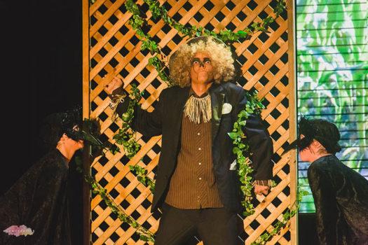 Wiz Scarecrow