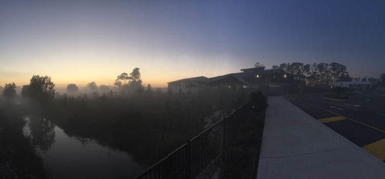 Misty Pimpama Exterior