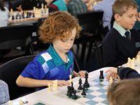 Kpc Chess 3308 1