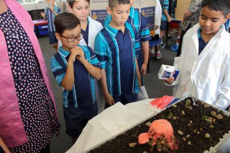 Year 5 Science Fair 2017 10