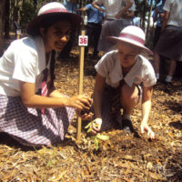 year-12-tree-planting-ceremony-2015-for-web-10