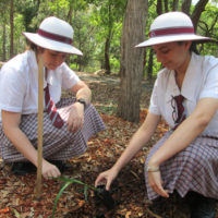 year-12-tree-planting-ceremony-2015-for-web-12